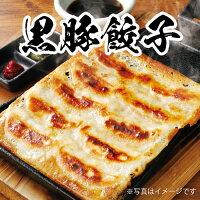 山内農場鹿児島黒豚餃子(冷凍・20ケ/P)