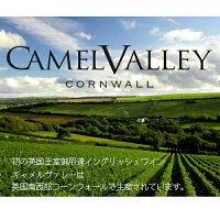 キャメルバリー・コーンウォールブリュットCamelValleyCornwallBrut2017(スパークリングワイン)750ml瓶白・泡イングリッシュワインギフトプレゼント贈り物