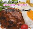 初回限定価格送料無料★!熊本県生産者直希少品種豚100%手作りポークハンバーグ6個 お試し2000円ポッキリ