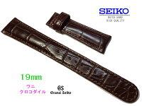 19mmセイコークロコダイル