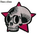 Skull on Purple Star Patch