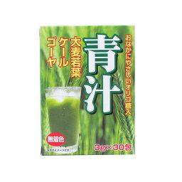 送料無料(北海道沖縄離島除く)青汁 おなかにやさしいオリゴ糖入り青汁(大麦若葉+ケール+ゴーヤ) 3g×30包 0271x1個