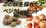 自然から生まれた米と野菜