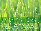 自然の恵み米「ヒノヒカリ」