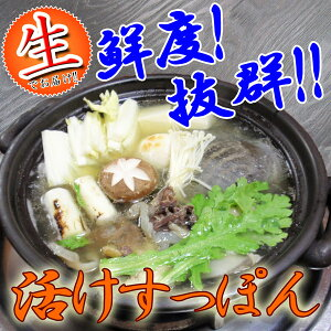 まるなべ/すっぽん鍋/スッポン鍋/お中元/すっぽんコラーゲン/すっぽんスープ送料無料 【捌いて...