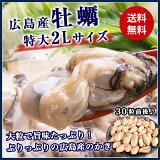 大粒2Lの牡蠣!約1kg(25〜35粒)剥いているので手間いらず!!業務用メガ盛りカキフライやお鍋にどうぞ!《※冷凍便》