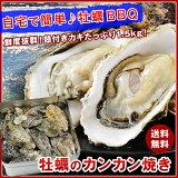 【送料無料】牡蠣のカンカン焼き殻付きマガキたっぷり1.5kg!
