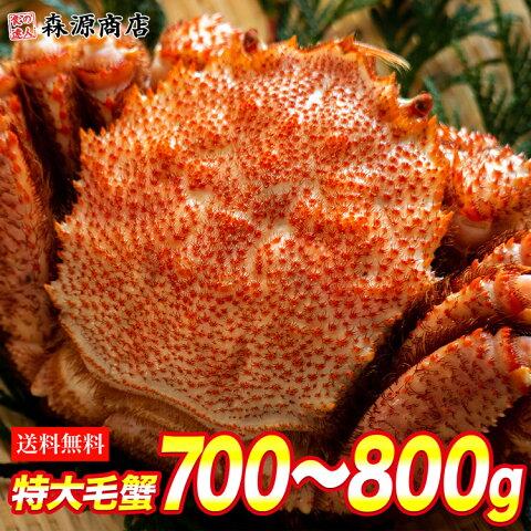( 毛蟹 毛がに ケガニ 蟹 カニ かに ) ロシア産 毛ガニ1尾 約760g