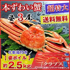 【超特大】 高級カナダ産 ボイル済み姿ずわい蟹 3尾セット約2.5kg