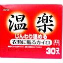 温楽 貼るタイプ ミニサイズ (30個入)【カイロ】