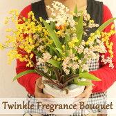 季節限定!ボリューム満点の甘い香りの贈り物♪ ジャパンフラワーセレクション受賞!『トゥインクル フレグランスブーケ 6寸陶器鉢花』 あふれる香りで生活に潤いを贈り物にも最適です♪
