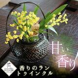 洋蘭ギフト 花 喜ばれる!香りと可愛らしさに癒される洋ラン『甘い香りの蘭 トゥインクル 和風かご仕立て』洋蘭 オンシジューム 鉢花送料無料