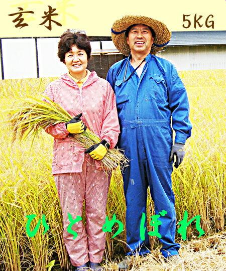 ひとめぼれ5kg玄米  生産直売岩手県ギフト