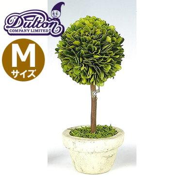 DULTON(ダルトン) CH07-G297M トピアリー ボール Mサイズ ハンドメイド/植物/インテリアグリーン/ミニ観葉植物