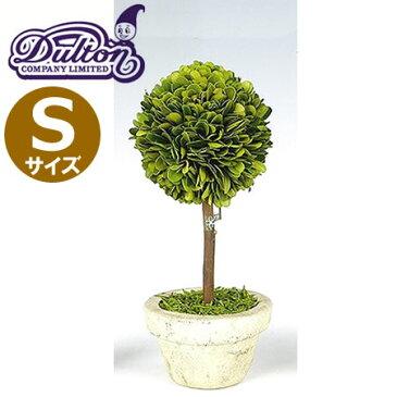 DULTON(ダルトン) CH07-G297S トピアリー ボール Sサイズ ハンドメイド/植物/インテリアグリーン/ミニ観葉植物