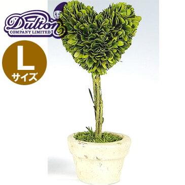 DULTON(ダルトン) CH07-G296L トピアリー ハート Lサイズ ハンドメイド/植物/インテリアグリーン/ミニ観葉植物