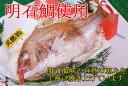 焼鯛【お食い初め】【初節句】【睨み鯛】【お祝い事】【焼き鯛】【楽ギフ_のし】【お正月】