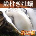 モリ旬で買える「【送料無料】岡山虫明産 曙牡蠣 3年物 殻付きかき約15個!(海鮮/貝/牡蠣/生かき/カキオコ/岡山/お歳暮)【楽ギフ_のし】【楽ギフ_メッセ】」の画像です。価格は3,218円になります。