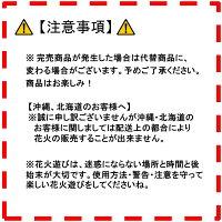 花火 手持ち 手持ち花火セット 国産 煙が少ない 変色 線香花火も入ってる 日本でつくった手持ち花火セット 送料無料