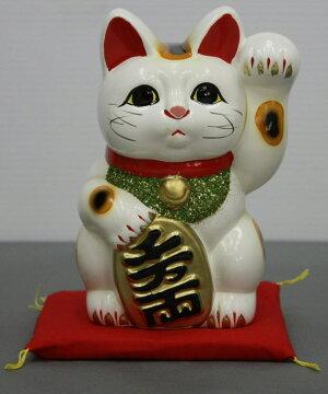 5号招き猫小判白(座布団付)【楽ギフ_包装】【楽ギフ_のし宛書】