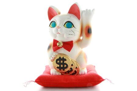 6号招き猫ドル猫白左手