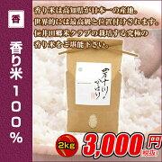 コンテスト 四万十川 シリーズ カミノカ