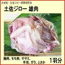 土佐ジロー雄肉 1羽分/胸肉、モモ肉、ササミ、手羽、ガラ、とさか/土佐鴨・土佐ジロー飼育研究会