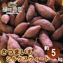 さつま芋「シルクスウィート」約5kg/S〜Lサイズ/森田農園/高知/日曜市/焼き芋用/さつまいも/サツマイモ/薩摩