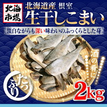 北海道根室産生干しこまい2kg【氷下魚】