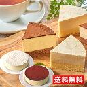 見方 北のチーズケーキ2種ギフトセット【送料無料】北海道スイ