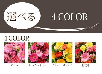 【敬老の日特集2010】【送料無料】スマイルブーケ♪笑顔が溢れる花束です。【smtb-k】【w2】