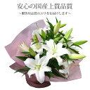 上質な白いユリ5本を豪華に、シンプルにまとめました花束!しっかりしたラッピングなので、あらゆる場面に映えます♪【フラワーギフト】