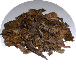 葉肉の厚い茶葉