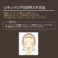 エビス〔ebis〕リキッドシア紫外線天然美容オイル原液美容原液