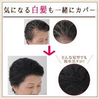 【初回限定特価】増毛スプレーヘアーモーメントP90gエビス(EBIS)/HairmomentP/薄毛隠し/分け目/自然/人気/ばれない/水に強い/ブラック/ダークブラウン