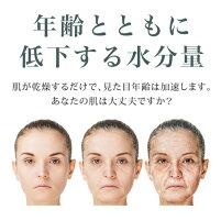 EBiS(エビス化粧品)モイスチャーローション125ml化粧水ヒアルロン酸贅沢に配合保湿化粧水人気