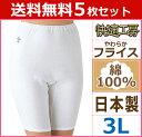 送料無料5枚セット 快適工房 5分パンティ 3Lサイズ 日本製 グンゼ GUNZE パンツ 通販 | レディース レディス 婦人 女性