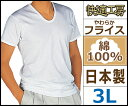快適工房 半袖U首Tシャツ 3Lサイズ 日本製 グンゼ GUNZE|メンズ 紳士 男性 半袖 半そで tシャツ 肌着 紳士肌着 男性下着 インナー インナーシャツ メンズインナーシャツ インナーtシャツ アンダーウェア アンダーウエア アンダーシャツ ティーシャツ ティシャツ