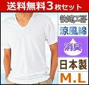 送料無料3枚セット 快適工房 涼風綿 半袖U首Tシャツ Mサイズ Lサ...