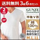 送料無料3組セット 計6枚 GreenMark 半袖V首Tシャツ 2枚...