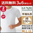 送料無料3組セット 計6枚 GreenMark 半袖丸首Tシャツ 2枚組 Mサイズ Lサイズ LLサイズ グンゼ GUNZE 通販 グンゼ GUNZE   グンゼ GUNZE グンゼ GUNZE グンゼ