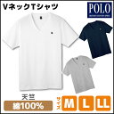 POLO ポロ VネックTシャツ 綿100% グンゼ GUNZE | ...
