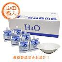H4O -600mv 30本 <ウォーターボウル付> 500円OFFクーポン取得可能! h4o H40