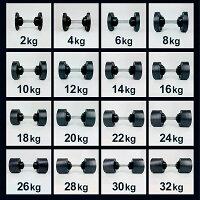 可変式ダンベル32kg2個セット2kg刻みFLEXBELLフレックスベルアジャスタブルダンベル