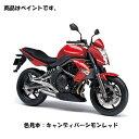 Kawasaki純正 J5012-0001-A5 カワサキ タッチアップペイント(...