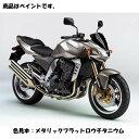 Kawasaki純正 J5012-0001-725 カワサキ タッチアップペイント...