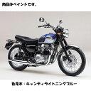 Kawasaki純正 J5012-0001-E1 カワサキ タッチアップペイント ...