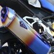 アールズギア RB01-01RD フルエキゾーストチタンマフラー ワイバンリアルスペック ドラッグブルー 水冷 【BMW】 R1200GS/GS-A
