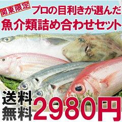 横浜市中央卸売市場に入荷された魚介類をプロの目利きがお客様にかわって目利きします。旬の魚...