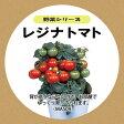 レジナトマト種子セット【水耕栽培 種 タネ たね】mas09 水耕栽培3点キット 定形外郵便対応